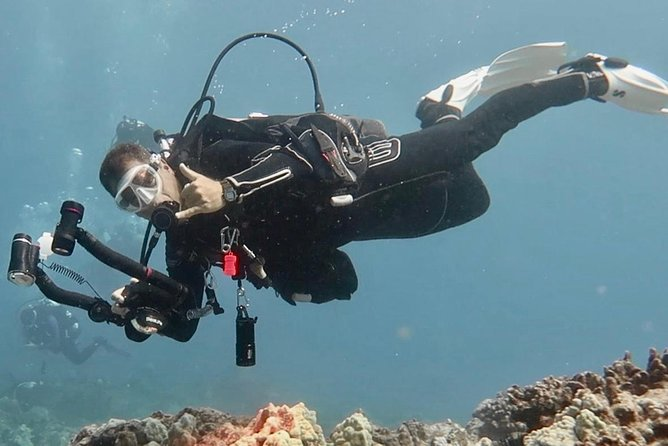 PRIVATE 2 Person Intro Scuba Dive, Try Scuba Diving! Only $449 For Both Divers photo 10
