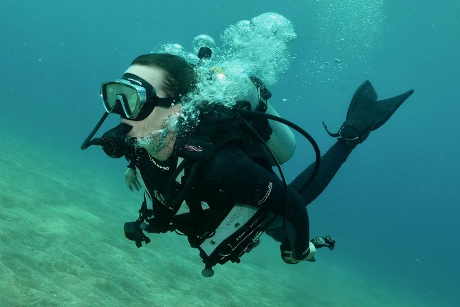 PRIVATE 2 Person Intro Scuba Dive, Try Scuba Diving! Only $449 For Both Divers photo 4