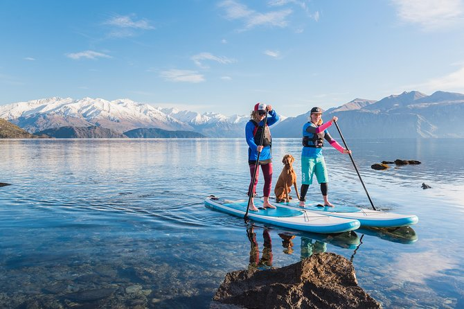 Halvdags Paddle Board Tour på Lake Wanaka