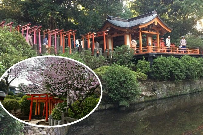 Private Half-Day Walking Tour in YANAKA Highlights