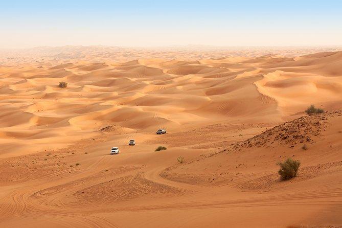 Liwa Full Day Desert Safari from Abu Dhabi
