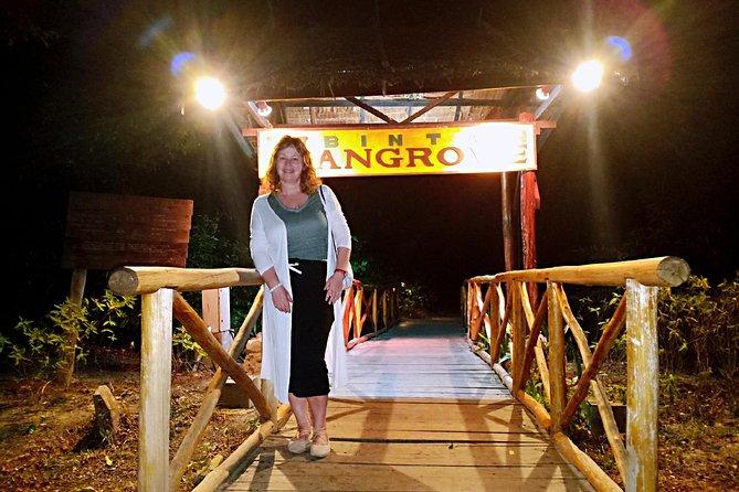 Bintan Fireflies Discovery Tour
