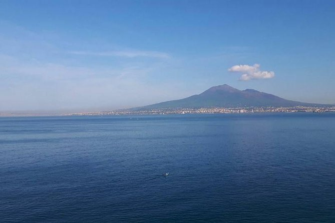 Semi Private Tour to Pompeii Ruins with a private guide and Pizza in Naples