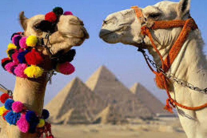 Cairo: Giza Pyramid, Sakkara & Memphis Full Day Guided Tour photo 14