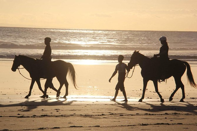 Horseback Riding in Djerba Lagoon