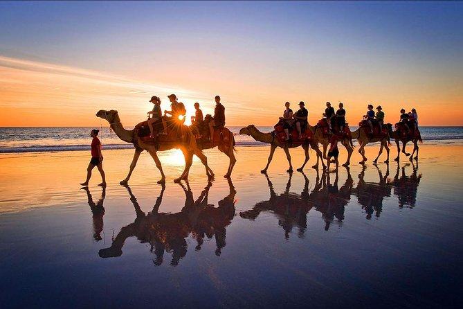 Camel ride Experience in Djerba Lagoon