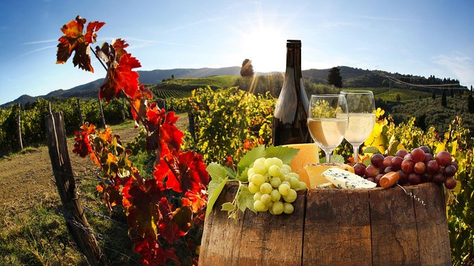 Relaxing Wine Tour With Food & Wine Tasting - Umbria