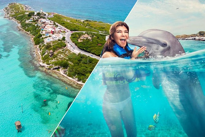 Dolphin Swim and Isla Mujeres Experiences