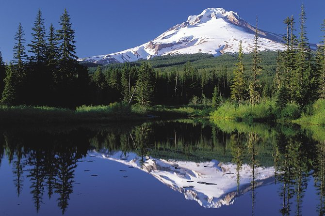 Columbia River Gorge Waterfalls and Mt Hood Tour from Portland