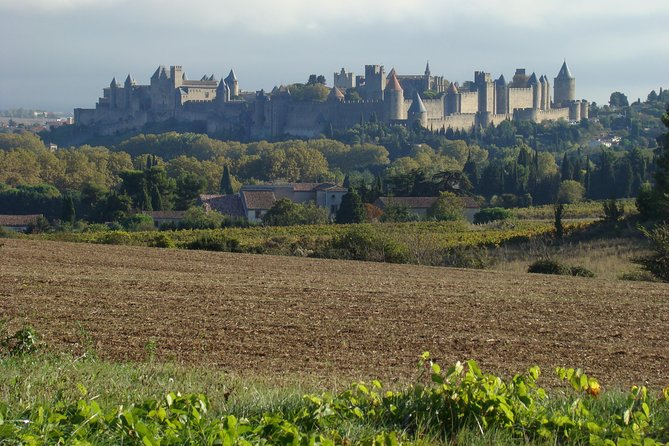 Carcassonne and Albi Private Sightseeing Tour from Toulouse