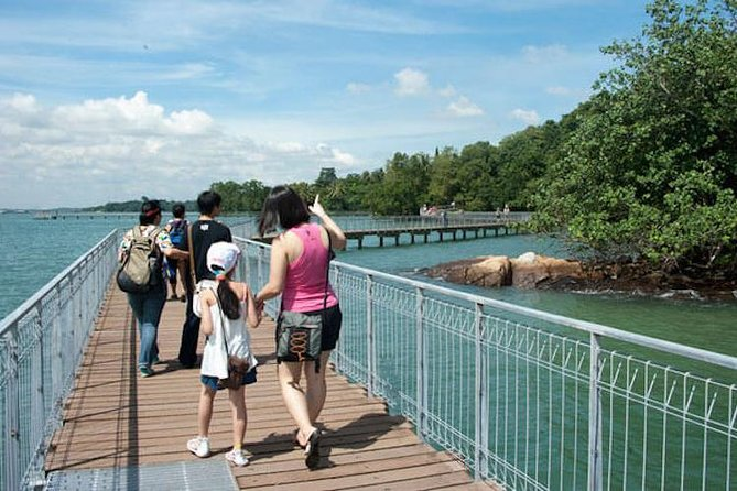 Nature Walk on Ubin Island and Chek Jawa photo 10