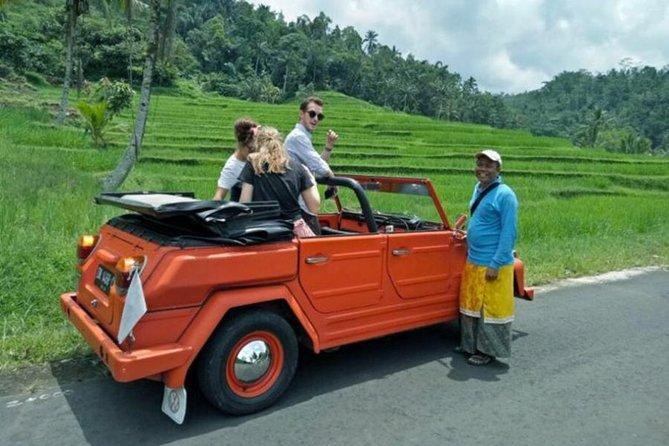 Bali VW Jeep Tour: Rice Terrace, Waterfall, Garden View