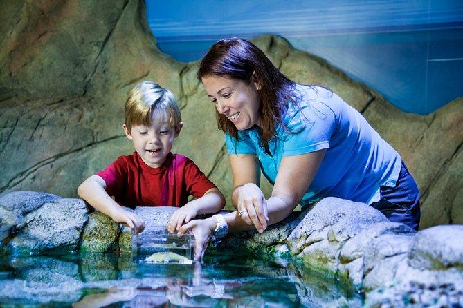 SEA LIFE Orlando Aquarium