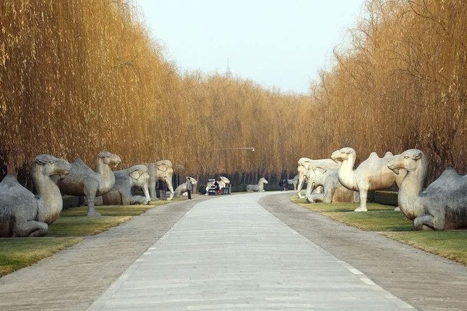 All Inclusive Private Beijing Tour: Ming Tombs, Sacred Way and Summer Palace