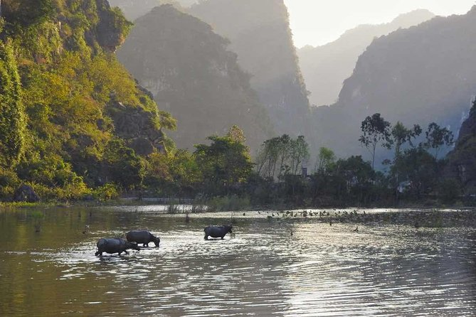 Hotel in Hanoi to Hotel in Ninh Binh Transfer