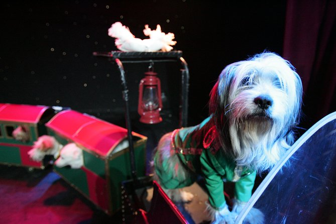 Popovich Comedy Pet Theater at Planet Hollywood Resort and Casino