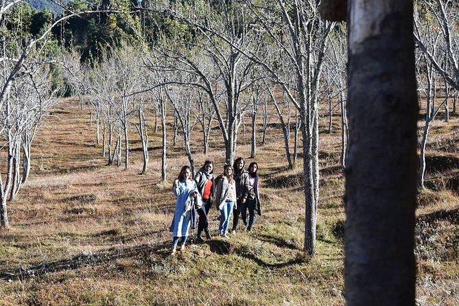 Chitlang Markhu Overnight Hiking Trip