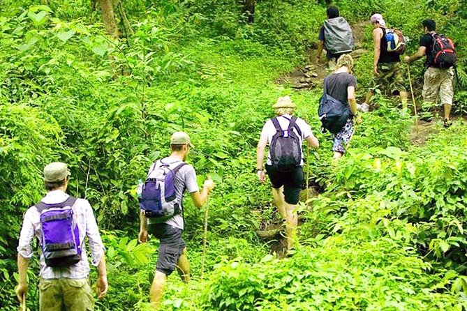 Bali Jungle Trekking and Uluwatu Sunset Tour