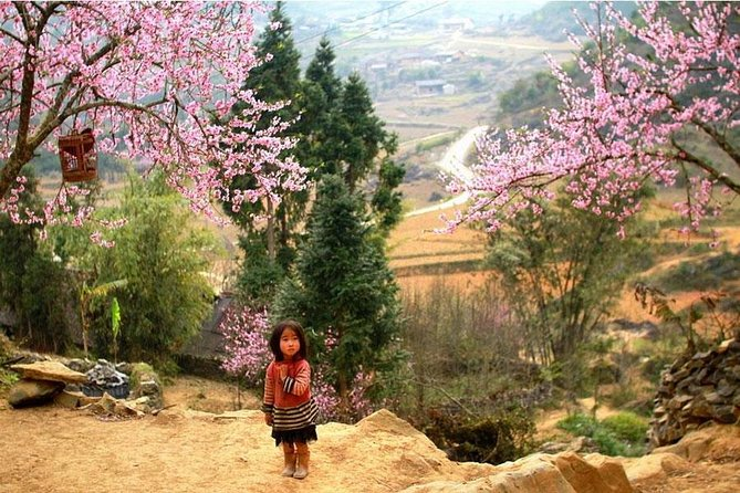 Sapa 3 Days 2 Nights Trekking Tour (1 Night In Ta Van Village, 1 Night In Hotel)