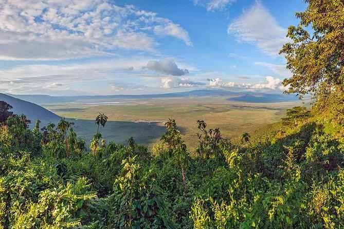 3 Days Budget Safari To Serengeti & Ngorongoro