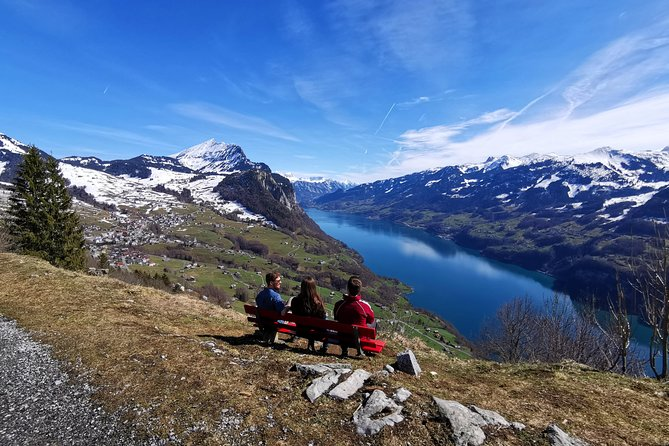 From Zurich: Breathtaking waterfall and lakes private tour