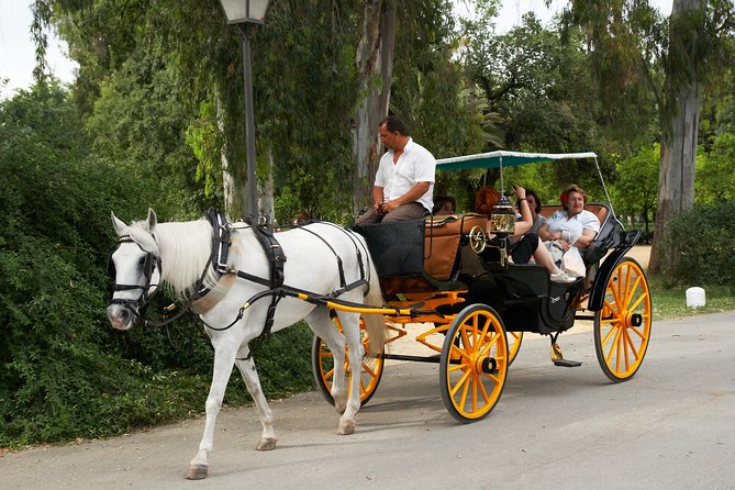 Private Tour: Horse-Drawn Carriage Ride Through Seville