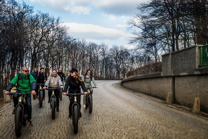 Small-Group Half-Day Electric Mountainbike Tour of Vienna