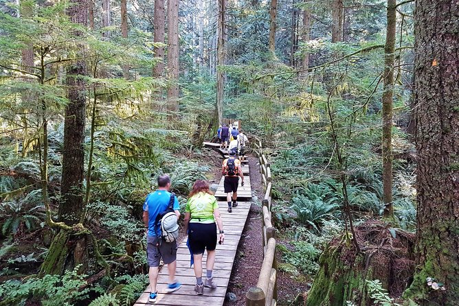 Vancouver Biking and Hiking Tour including Lunch photo 11