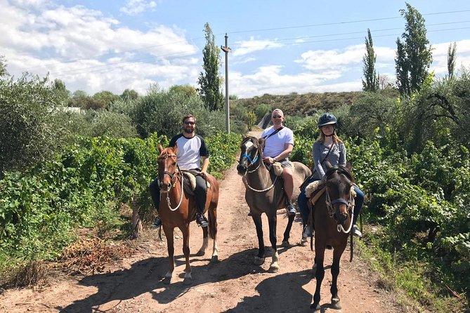 Paseo a caballo por viñedos con almuerzo de asado gourmet, Mendoza, ARGENTINA