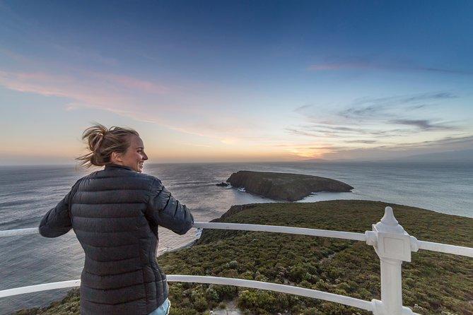 ブルニーアイランドの灯台ツアー