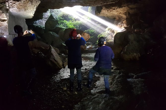 Private Waitomo Glowworm Cave Tours