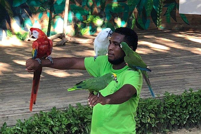 National Aviary round trip - Cartagena to Baru