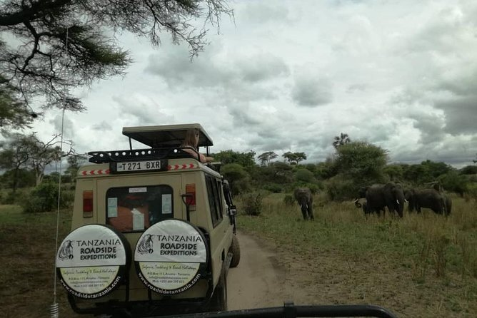 3 Days Safari to lake manyara,Ngorongoro Crater and Tarangire