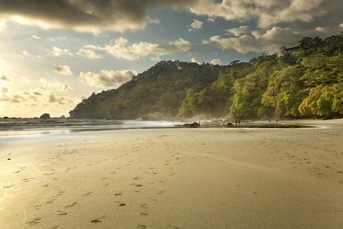 Beaches and Nature with Santa Teresa