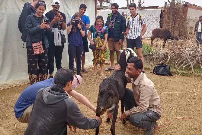 Real Rural India - A Village Safari ( Jaipur )
