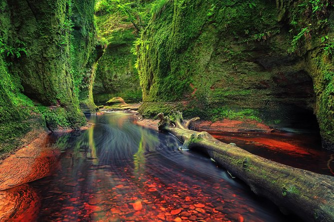 Find a hidden Glen in Scotland's woods