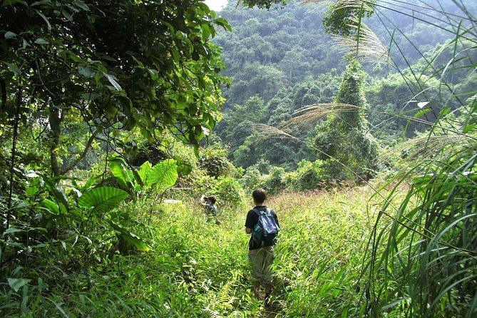Vietnam Trek & Paddle Tour – Rainforest & Lan Ha Bay Challenge