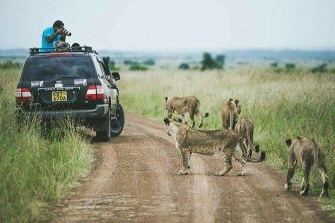 1 Day Nairobi Excursions