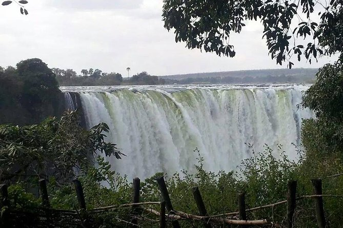 Guided Tour of Victoria Falls (Zimbabwe)