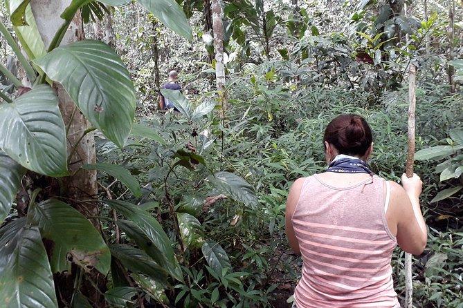 Jungle Trekking at Raja Ampat