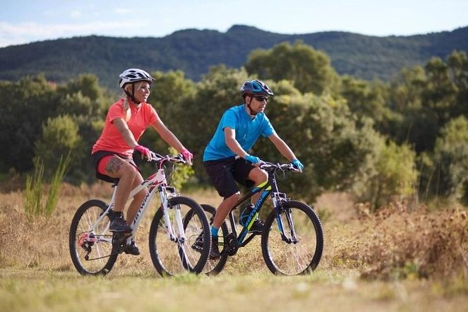 Rent a Mountain Bike 1 until 7 Days in Maspalomas : Visit Gran Canaria South