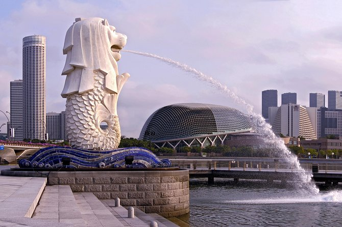 Image result for singapore tour