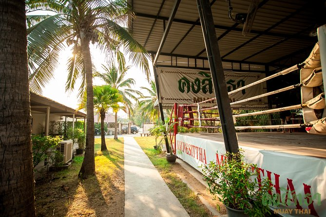Muay Thai Lesson Led by Boxing Champion with Pad Thai photo 6