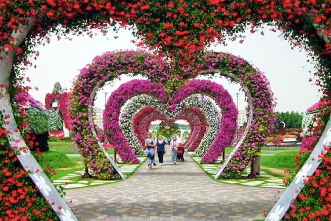 Jardin Miracle Avec Transport