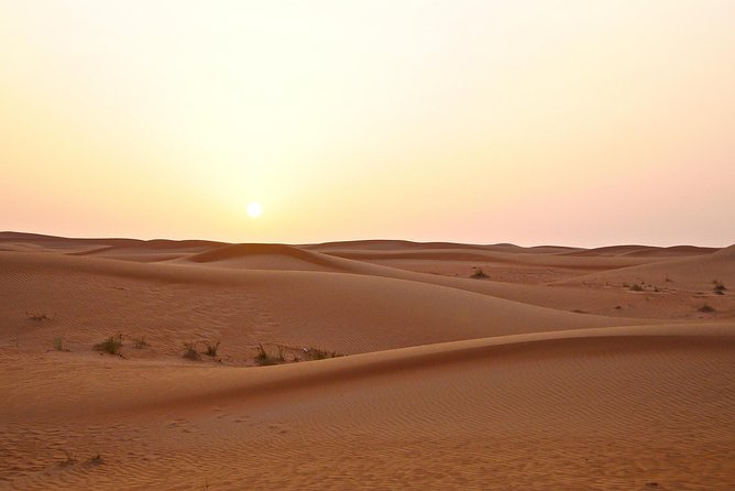 Dubai Red Dunes Safari by Quad Bike, Sand boarding, Camel Ride & BBQ Dinner photo 3