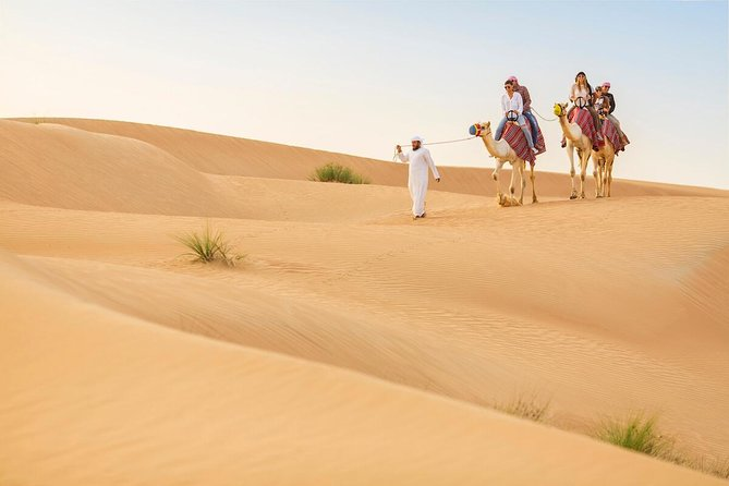 Dubai Red Dunes Safari by Quad Bike, Sand boarding, Camel Ride & BBQ Dinner photo 8
