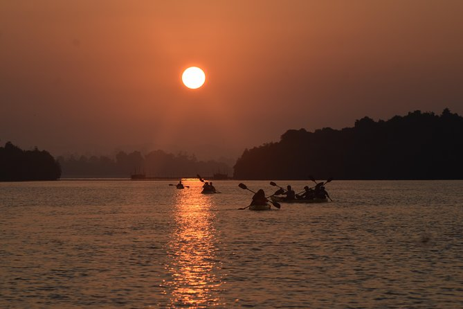 Sunrise Mangrove Kayaking - Madu River Ahungalla (+ Colombo Shuttle)