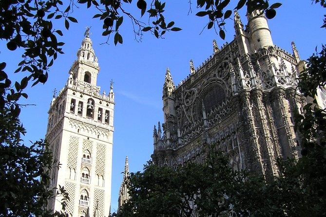 Private Tour: Seville City Tour (Cathedral, Royal Alcázar and Santa Cruz)