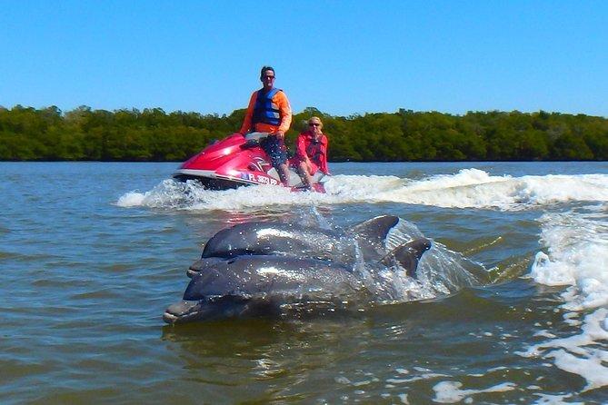 Avi's Premium Dolphin Tour by Jet Ski