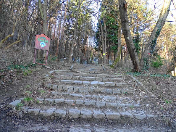 Mt. Vitosha and Boyana Waterfall Hiking Tour from Sofia